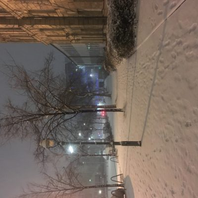 Winter, Fasanen Strasse (2017)